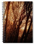 Dawn In The Trees Spiral Notebook