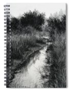 Dawn Marsh Spiral Notebook