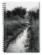 Dawn Marsh Spiral Notebook