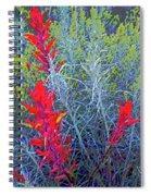 Dawns Impressionistic Paintbrush Spiral Notebook