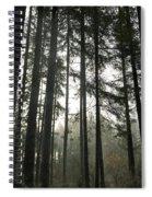 Day Break Spiral Notebook