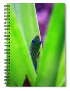 Day Gecko And Pineapple Plant Spiral Notebook