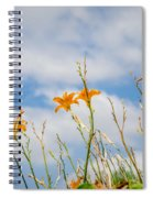 Day Lilies Look To The Sky Spiral Notebook