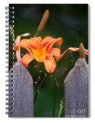 Day Lilly Fenced In Spiral Notebook