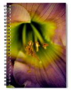 Day Lily In Purple Spiral Notebook