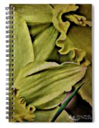 Day Lily In Yellow Spiral Notebook