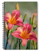Day Lily Twins Spiral Notebook