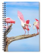 Day Of The Spoonbill  Spiral Notebook