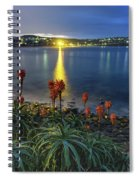 Daybreak And Cloudy Seascape And Aloe Vera Spiral Notebook