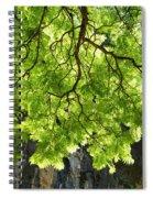Daydream Spiral Notebook