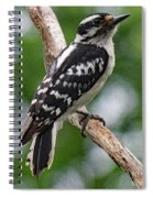 Daydreaming Downy Woodpecker Spiral Notebook