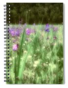 Daydreams In A Meadow Spiral Notebook