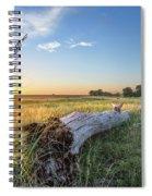 Daydreams Spiral Notebook
