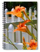 Daylilies On Picket Fence Spiral Notebook