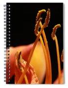 Daylilly Spiral Notebook