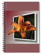Daylily Spiral Notebook