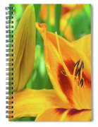 Daylily Bud And Bloom Spiral Notebook