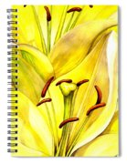 Daylily Spiral Notebook