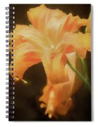 Daylily Dream Spiral Notebook