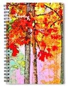 Daytime Diversity Spiral Notebook
