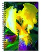 Dazzle In The Garden Sun Spiral Notebook