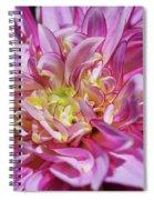 Dazzling Dahlia Spiral Notebook