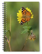Ddp Djd Painted Lady On Sunflower 2690 Spiral Notebook
