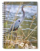 De Leon Springs Blue Spiral Notebook
