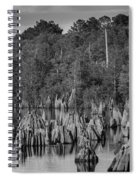 Dead Lakes Cypress Stumps Bw  Spiral Notebook