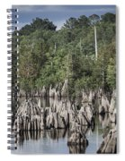 Dead Lakes Cypress Stumps Spiral Notebook