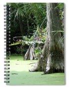 Wild Florida Dead Mans River Spiral Notebook