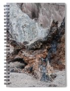 Dead Wood In Color Spiral Notebook