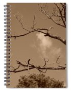 Dead Wood Spiral Notebook