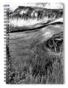 Deadwood On Cherry Creek Trail 2 Spiral Notebook