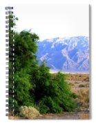 Death Valley 2 Spiral Notebook