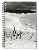 Death Valley Brush Spiral Notebook