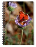 Death Valley Butterfly Spiral Notebook