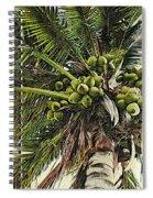 Debbie's Coconuts Spiral Notebook