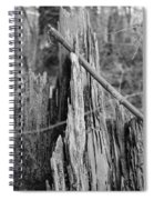 Decayed Stump Spiral Notebook