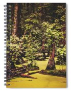 Decayed Vegetation - Run Swamp, North Carolina Spiral Notebook