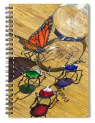 Deception Spiral Notebook
