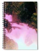 Deception Falls  Spiral Notebook