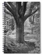 Deciduous Tree Ir Spiral Notebook