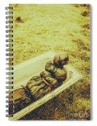 Decomposition Of A Murder Mystery Spiral Notebook