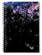 Decorated Sky Spiral Notebook