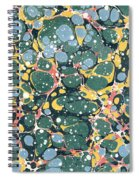 Decorative Endpaper Spiral Notebook