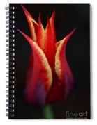 Decorative Tulip Spiral Notebook
