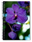 Deep Blue Orchid Spiral Notebook
