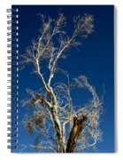 Deep Blue White Tree Spiral Notebook