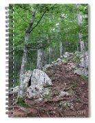Deep Forest Rocky Path Nature Spiral Notebook
